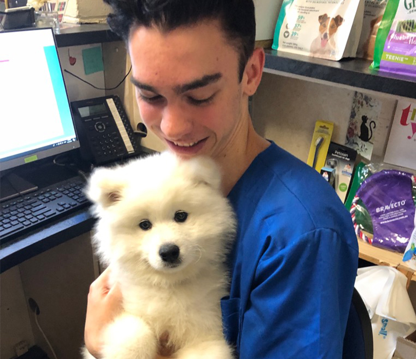 Trainee Nurse  Our trainee nurse Josh has been with us since February 2019 and is currently studying a Certificate 4 in Veterinary Nursing.  Josh also volunteers at the Taronga Zoo and has a passion for snakes and reptiles, owning two pet snakes one of which is named Fluffy.